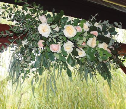 arbor blooms - roses
